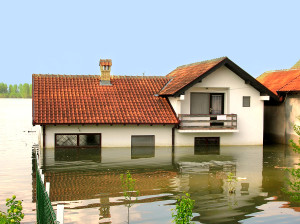 Flood Insurance Agency Fairbanks, AK